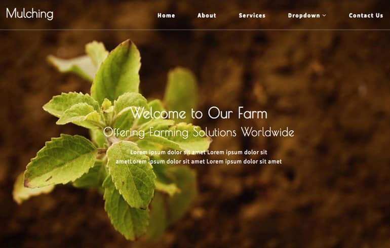 free plantation website template
