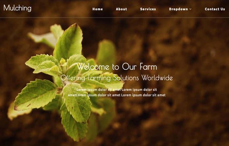 free plantation website template