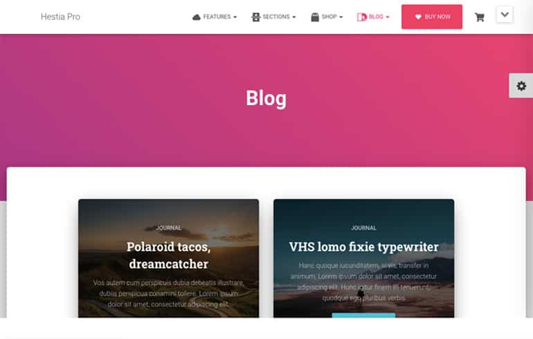 pro version templates for blog website