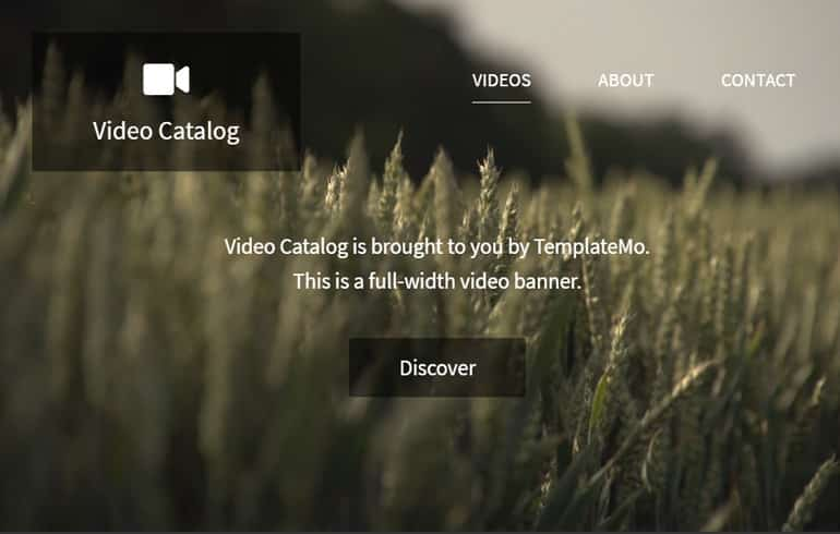 Free Video Gallery Website CSS Template